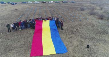 Tinerii din PSD Constanța au plantat 140 de copaci pentru a marca Ziua Dobrogei