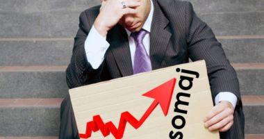 Iată cu cât a crescut rata șomajului