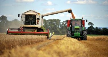 Recolta de cereale e mai mică decât în 2016, iar preţurile îi nemulţumesc pe fermieri
