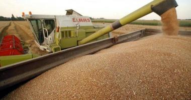 Recordurile agriculturii româneşti