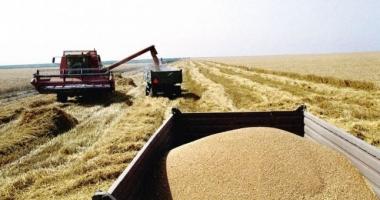 Reguli mai stricte pe piaţa cerealelor
