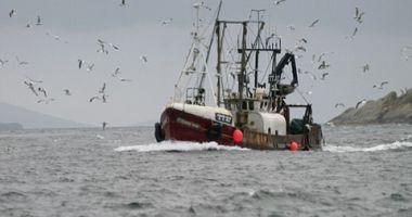 Rusia construiește o flotă de pescuit