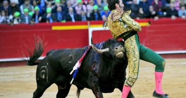 Scene de groază surprinse în timpul unei coride din Spania! Toreador sfârtecat de un taur