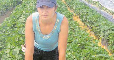 Joburi în străinătate. Se caută muncitori în agricultură