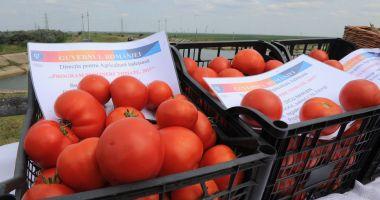 Se fac plățile pentru programul de tomate