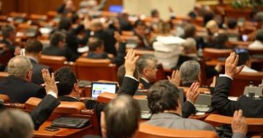 Senatul a validat numirea procurorului Luminiţa Palade ca membru CSM