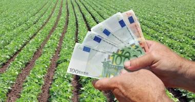 Se plătesc ajutoarele în sectorul vegetal