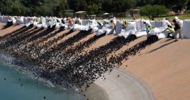 Au aruncat 96 de milioane de mingi negre de plastic în apă. Iată motivul