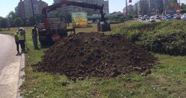 Lucrările de întreținere a spațiilor verzi din Constanța sunt în plină desfășurare!