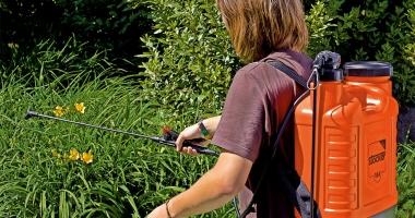 Primăria Constanţa a început stropirea spaţiilor verzi din oraş cu insecticide