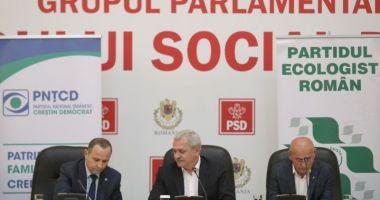 PNŢCD şi Partidul Ecologist au semnat un protocol de susţinere cu PSD pentru alegerile europarlamentare