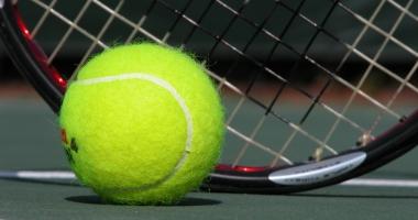 TENIS / Niculescu şi Cîrstea vor juca în meciul de Fed Cup împotriva Belgiei