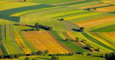 Daea: Străinii nu dețin 40% din terenurile agricole, legislația va fi modificată