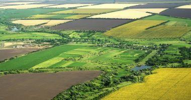 Terenurile agricole se vor putea vinde după ambele legi