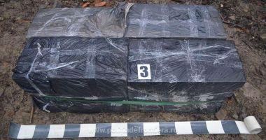 Vameşii au confiscat mii de ţigări de contrabandă, ce urmau să ajungă pe piaţa neagră