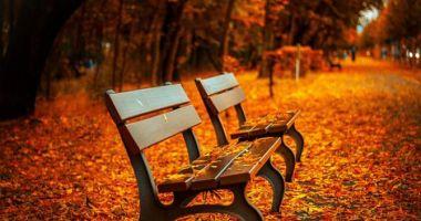 TOAMNĂ AUTENTICĂ! ANM a anunţat prognoza pentru intervalul 5 - 18 noiembrie