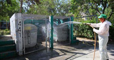 Toate platformele de deşeuri din oraş sunt dezinfectate