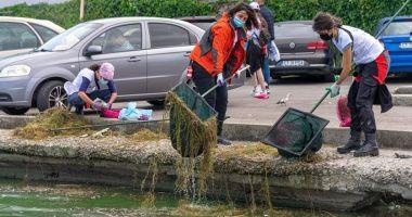 Tone de gunoaie, adunate de voluntari pe Lacul Tăbăcărie