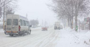 Ai drumuri de făcut spre Mangalia sau Techirghiol? Iată cu ce autocare mai poţi circula. Operatori care au suspendat cursele!