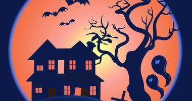 Carnaval de Halloween… la Harlequin