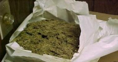 Droguri confiscate de Crima Organizată  la festivalul SunWaves 2012