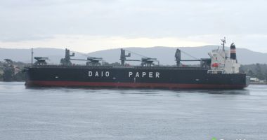Un cargou s-a scufundat după coliziunea cu o navă japoneză; un marinar a murit