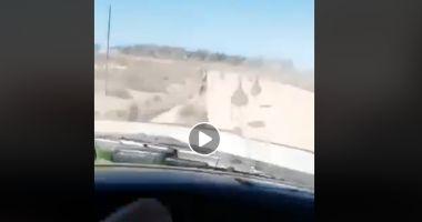 IMAGINI REVOLTĂTOARE! Un şofer s-a filmat în timp ce UCIDE PĂSĂRI şi se amuză de fapta sa