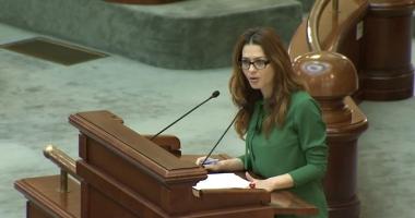 USR solicită Parlamentului reînfiinţarea Comisiei comune pentru Codul Electoral