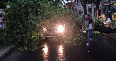"""""""Am văzut moartea cu ochii!"""" Copac doborât de furtună, căzut peste o maşină"""