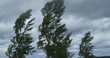 O nouă avertizare de la meteorologi! Rafale puternice de vânt, la Constanţa