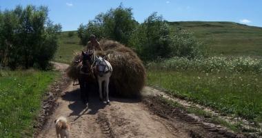 BNR: România crește economic, dar nu se dezvoltă