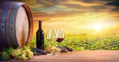 Vinul românesc, promovat ca brand de ţară