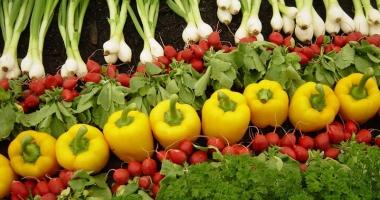 Vreţi să învăţaţi cum se face agricultură ecologică?