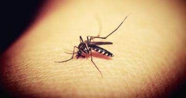 ESTE ALERTĂ! Încă un deces cauzat de virusul West Nile