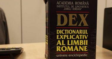 Guvernul a cumpărat 1.200 de dicționare și cărți de gramatică