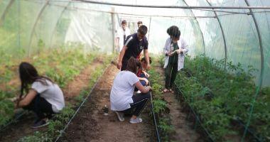 Ziua Mondială a Mediului, marcată de elevii Liceului Agricol Poarta Albă