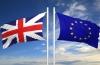 """Britanicii trag de timp cu Brexit-ul:  """"E prea devreme s� activ�m articolul 50"""""""